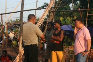 In Sorong, mangrove poles are used as construction materials.