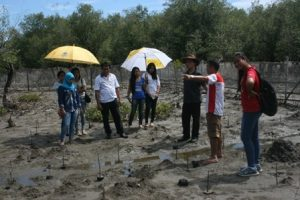 Starting the survey of mangroves and their habitats.